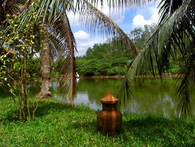 Mekong Delta4